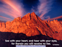 See with your heart, and hear with your eyes, for therein you will receive no lies. ~ TurtleStar