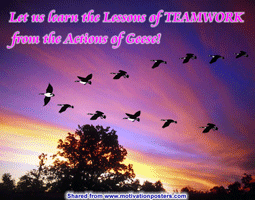 Let us Learn the Lessons of TEAMWORK... from the Actions of Geese! ~ P-R Posters